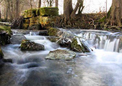 Unberührte Natur im Steigerwald